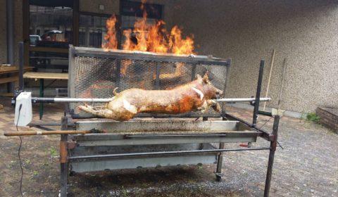 Cochon de lait grillé , service traiteur dans l'oise